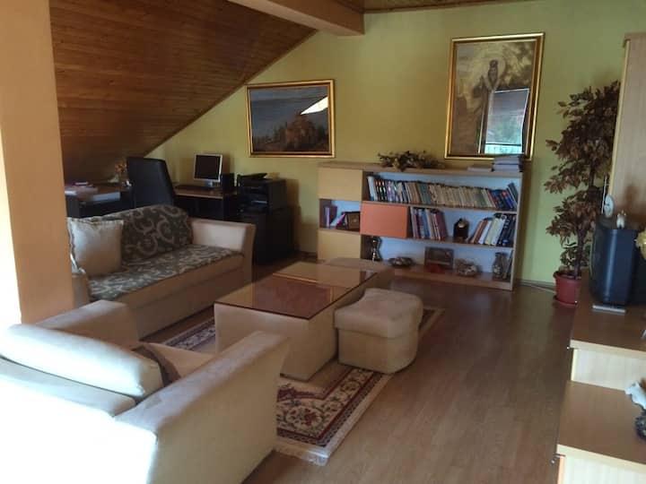 Cozy floor with private room - Skopje