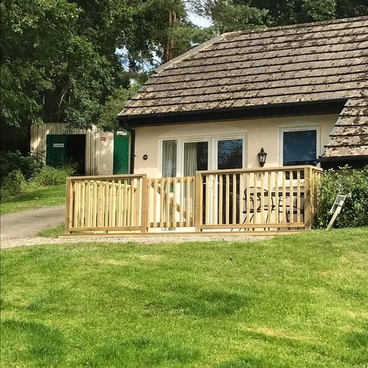Woodland cottage, perfect to explore Devon.