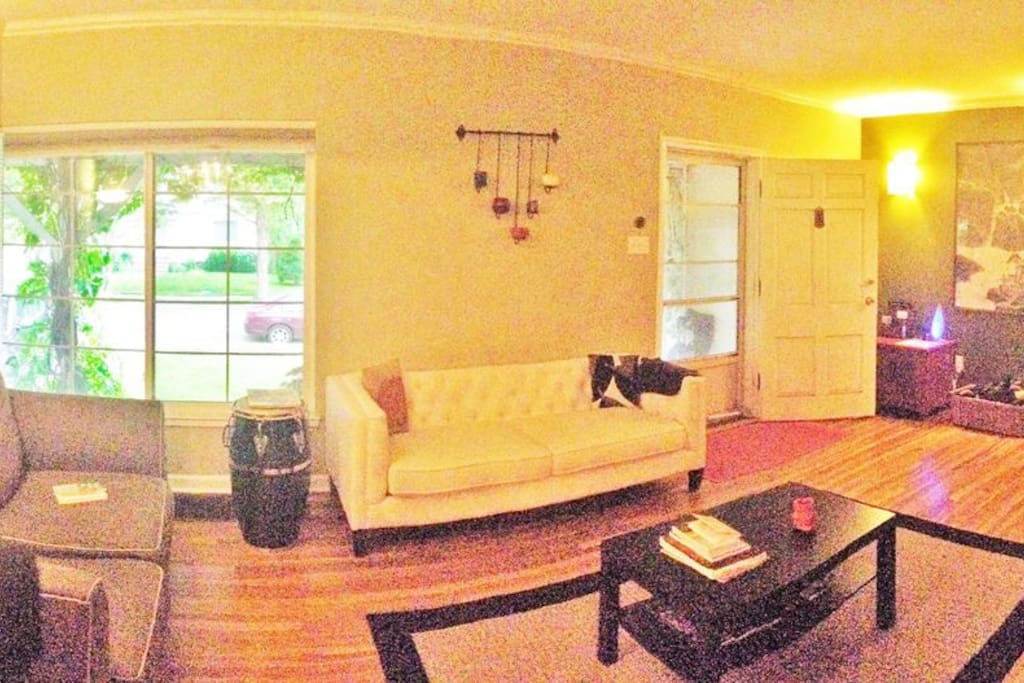 Spacious living room is furnished with comfortable high-quality furniture and decor