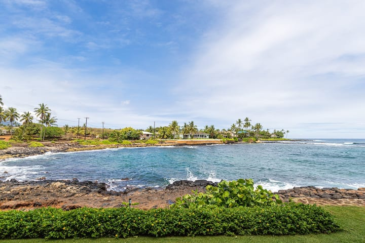 New listing! Oceanfront, ground-floor condo w/ amazing view - close to beaches!
