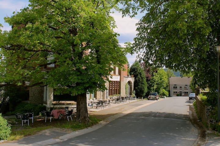 het huis gezien vanaf het dorpsplein met de kastanje waaronder het heerlijk vertoeven is