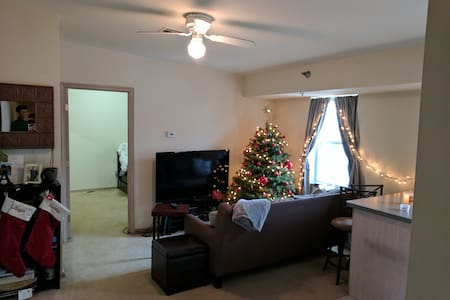 Summer Sublet. Downtown New Brunswick - New Brunswick - Leilighet