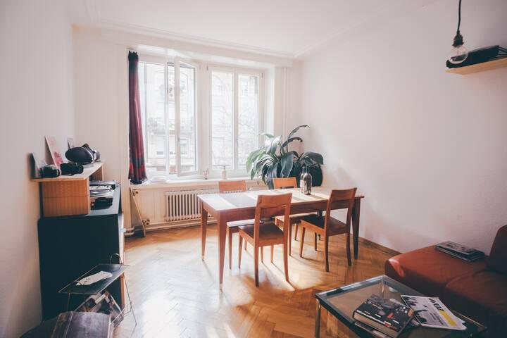 Charming Apartment in Zurich - Zürich - Apartment