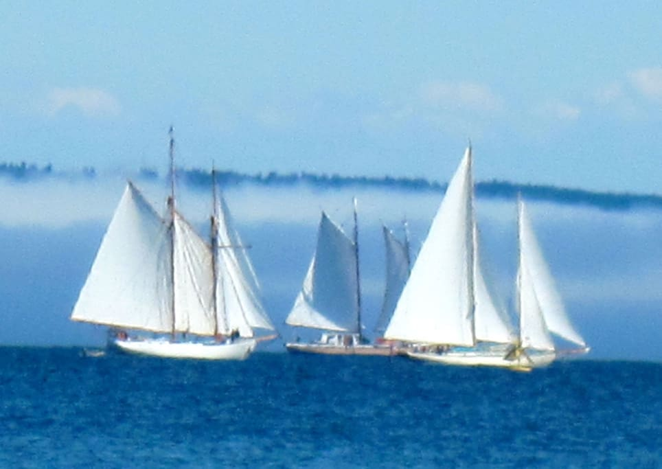 Sailboat races are Wednesday and Friday.