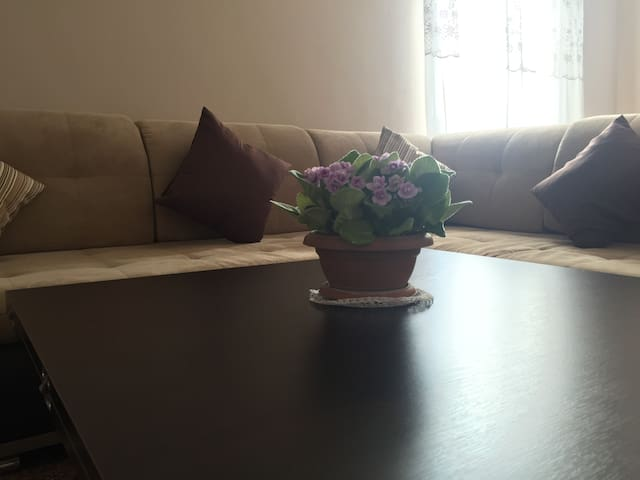 Your Comfort Zone in Yerevan city centre - Yerevan - Apartment