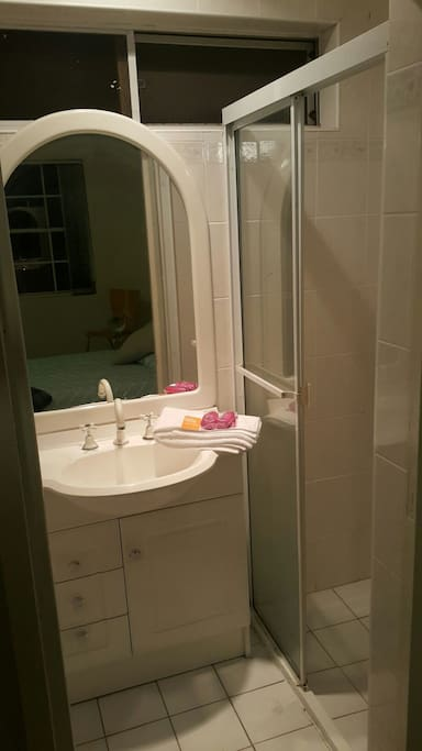 Private ensuite bathroom with toilet and shower