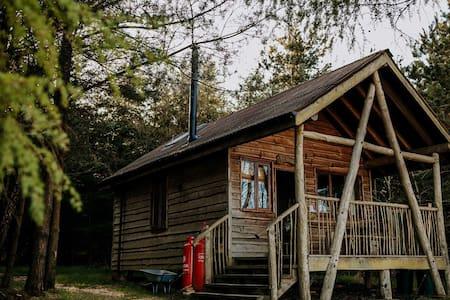 Swinton Bivouac - Tree Lodge
