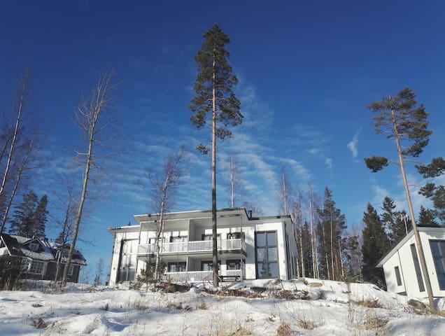 PARITALOHUONEISTO JYVÄSKYLÄN LÄHELLÄ RIIHIVUORESSA