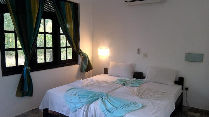 Ancient Villa Sigiriya
