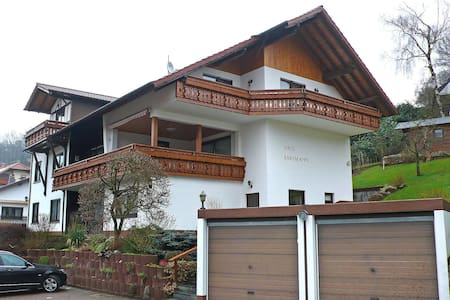 Great Apartment Bartmann 5435.2 - Beerfelden - Leilighet