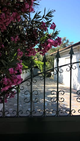 Typical Portuguese house with garden. - Mangualde