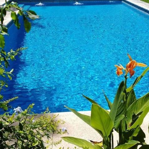 Casa moderna y funcional con piscina y mucho verde