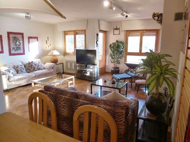 Apartamento en Jaca. Esqui-Piscina-Garaje-Vistas - Jaca - Wohnung