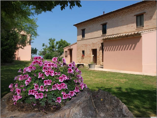 In collina a solo 20 min dal mare.. - Monte Giberto - Bed & Breakfast