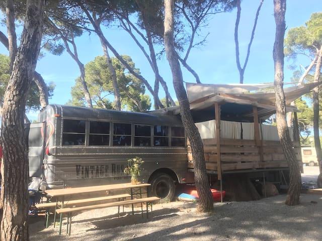 vintage Camper at camping La PIaya Ibiza Es Canar