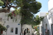 Steps away from the hotel you will find our favorite street - with shops,restaurants, cafes and nightlife.   To see videos of the rooms, please try you tube hotel parko channel.