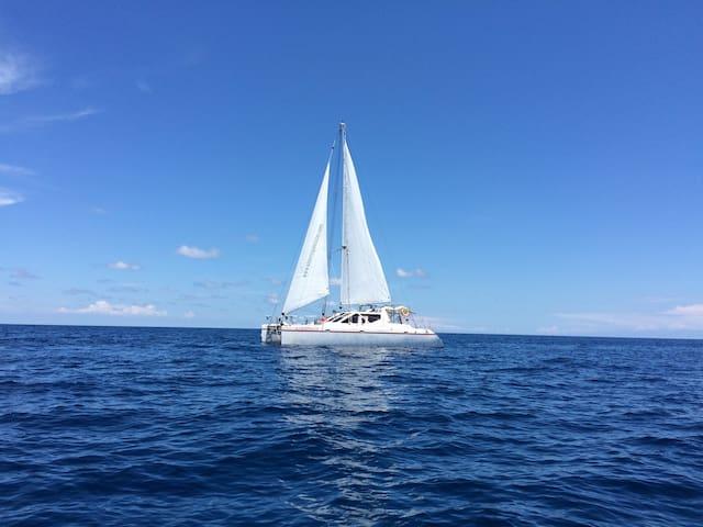 Alcheringa 2.0 Live On Board Sailing Manado area