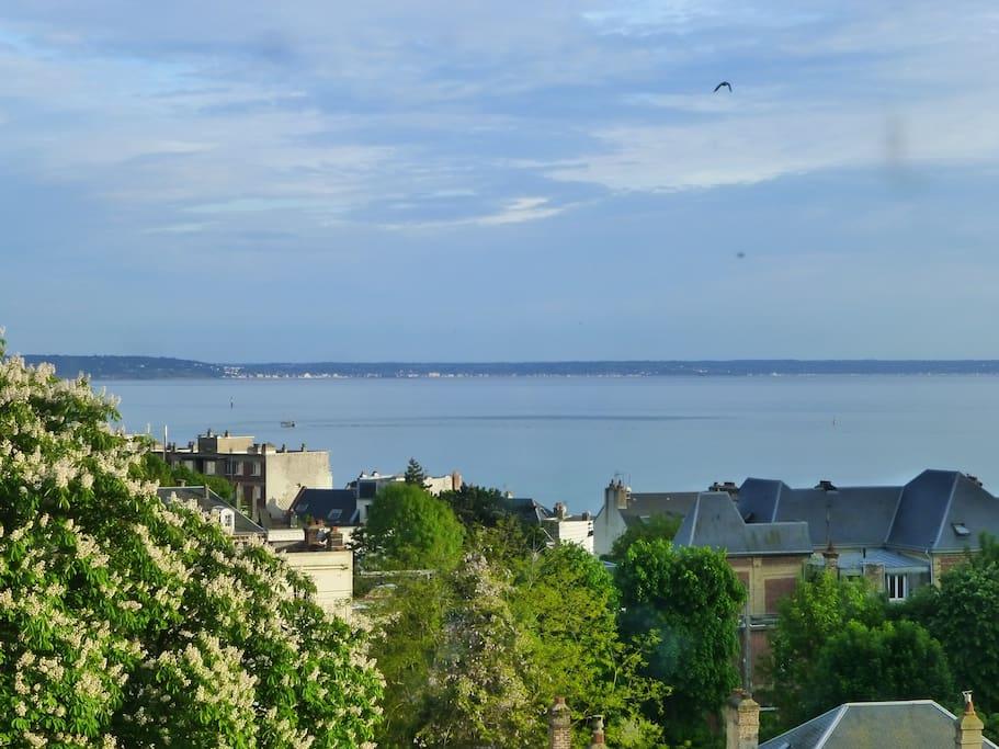 vue sur la mer du studio