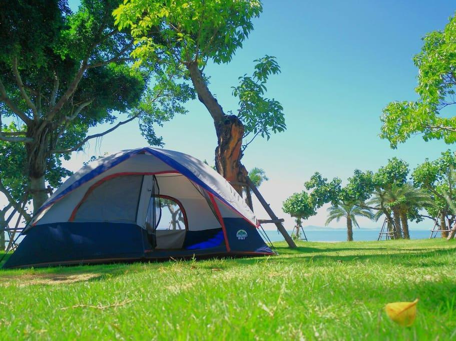 由于背光,调了一下光,没能拍出比较真实的照片。此处是椰风寨小草坪。