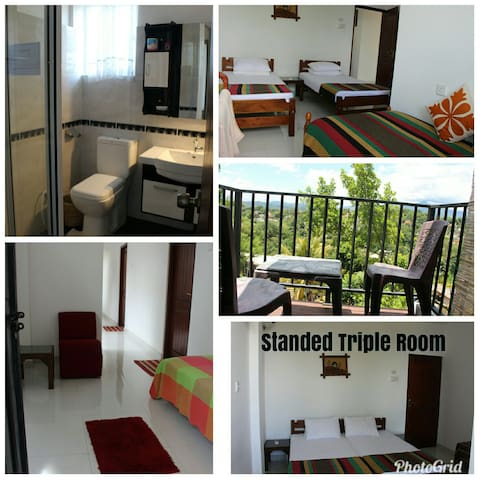 ALEXHOMESTAY  TWIN ROOM
