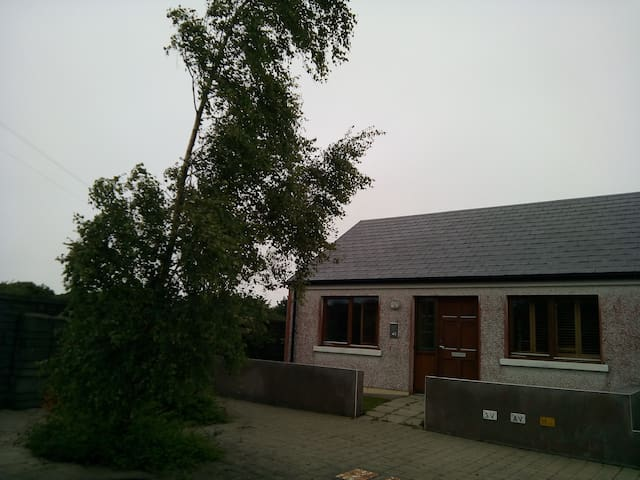 Small Comfortable House in Galway Suburbs