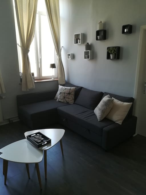 Salon avec canapé lit - Living room with sofa (2 places)