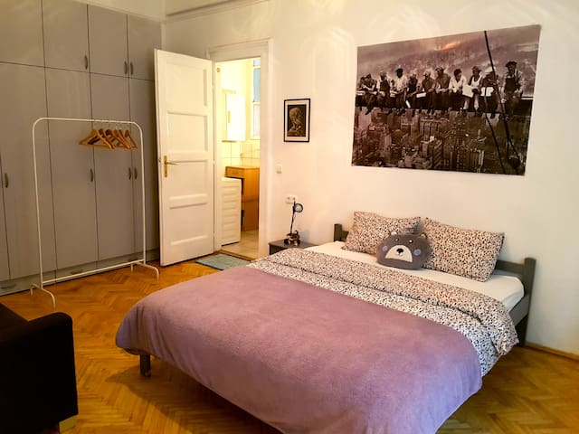 Downtown Room with Private Bathroom + Bike Rental