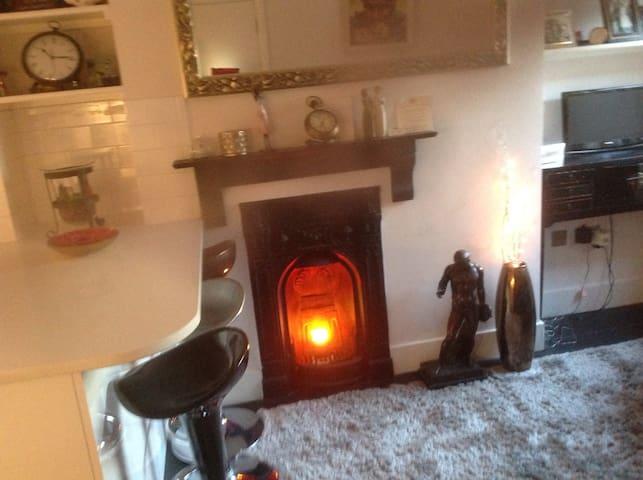 Luxury 2 bedroom flat in South West London. Zone 2