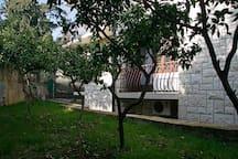 Small studio  garden