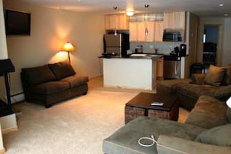2 bedroom 3 bath ski in/out awesome - Copper Mountain - 公寓