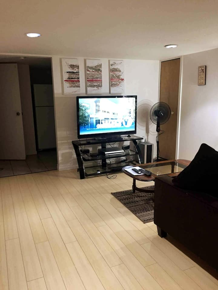 Windsor Canada apartment close to Detroit River