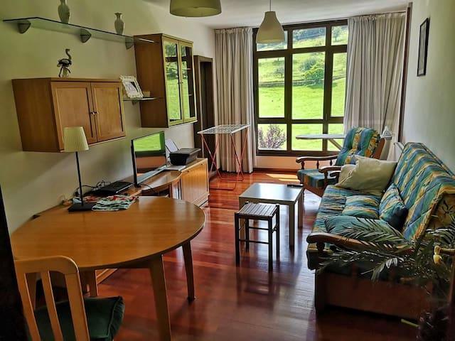 Apartamento en Asturias, soleado y exterior. Panes