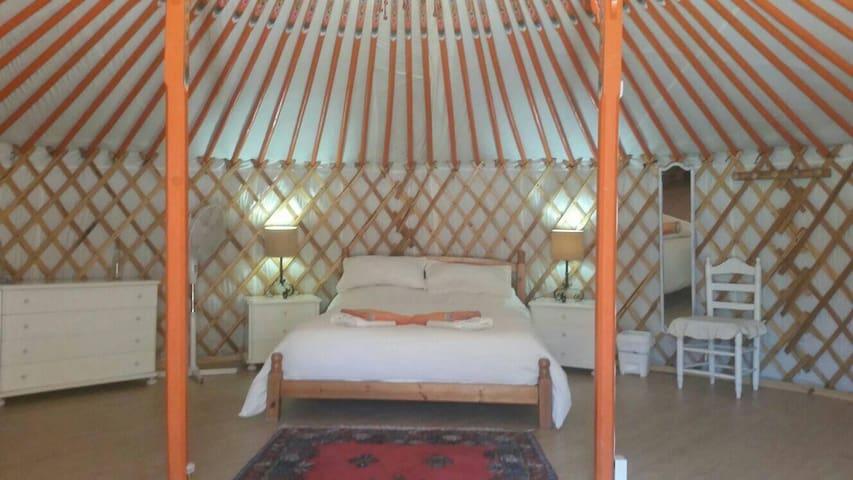 Romantic Mongolian Yurt nestled in pure nature.