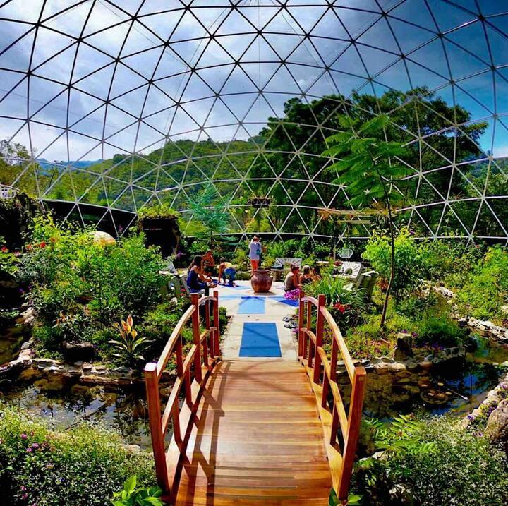 Home, Kitchen, yogastudio, gardenDome, playground.