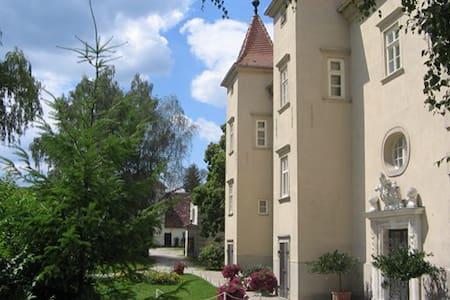 Feel like Home ! In the wonderful castle ! - Gansbach - 城堡