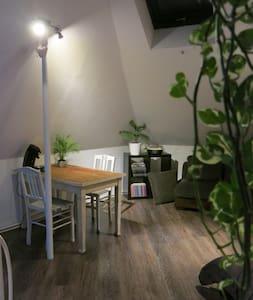 Gezellige kamer met eigen leefruimte - Gand