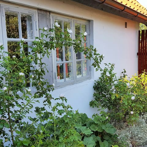 Charming cottage near the sea ! - Lerberget