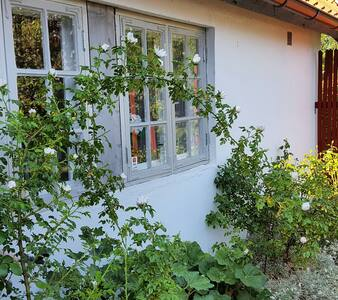 Charming cottage near the sea ! - Lerberget - Hytte