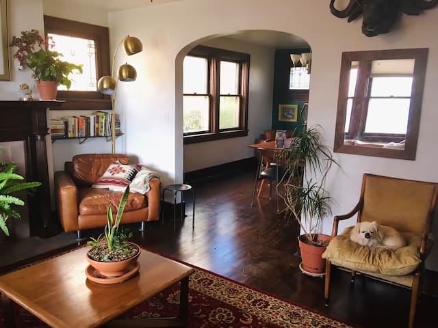 Unique and artsy, entire house close to downtown