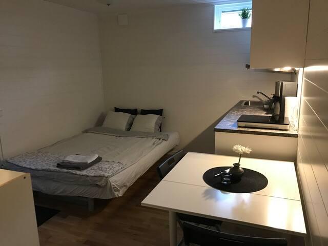 Nyrenoverat rum, egen ingång, kök, dusch, toalett.