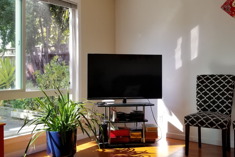 Living room TV corner