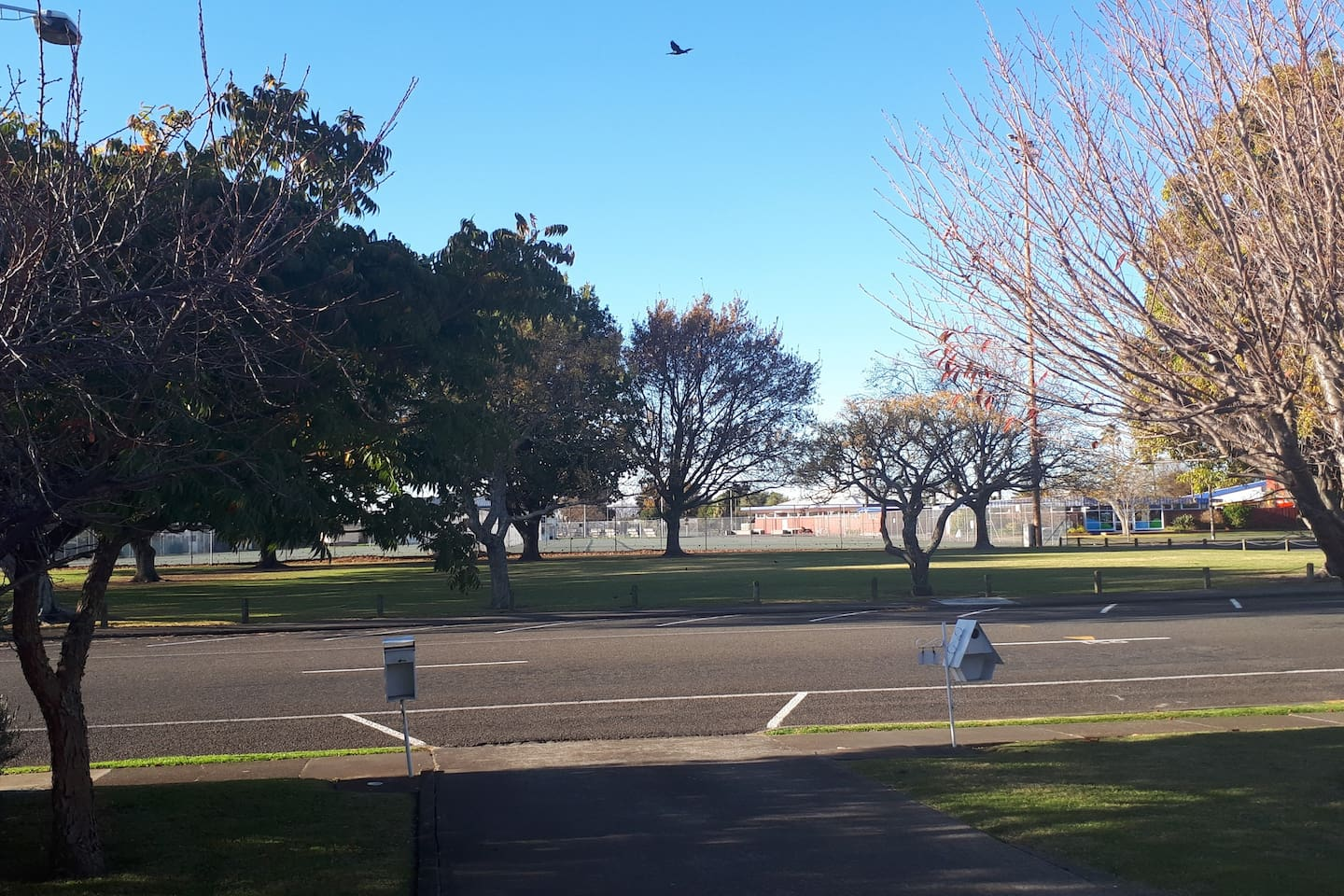 Park across the road includes netball courts, Aquatic Centre, Omni gym, large open space and trees for climbing.