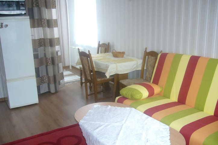 Apartman 2+kk Teplice  in the spa area - Teplice - Apartment