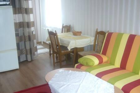 Apartman 2+kk Teplice  in the spa area - Teplice - 公寓