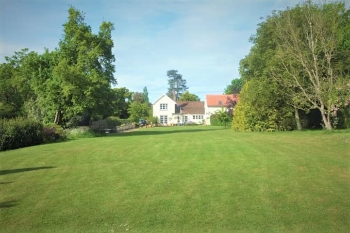 View from bottom of Garden