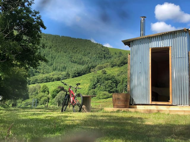 Dyfi Adventure Shepherds Hut