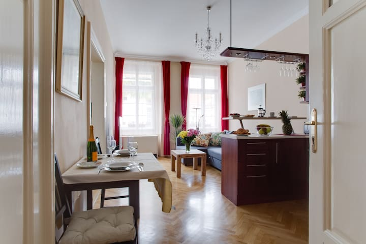 Heart of Prague - Two Bedroom Family Apartment !