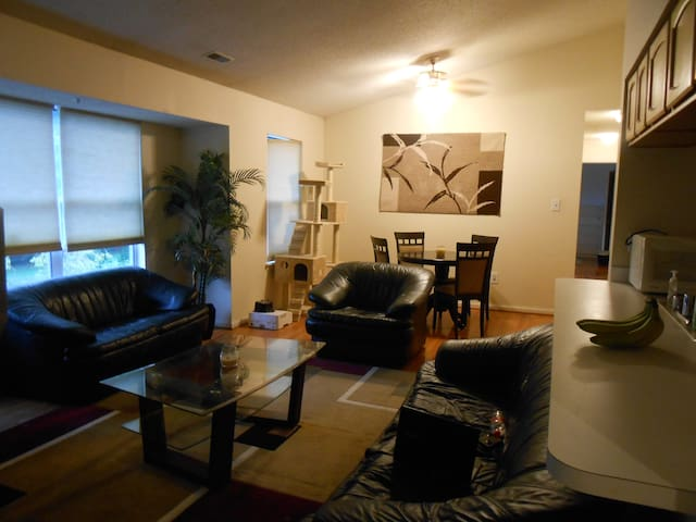 Your Peaceful Oasis in Silver Spring