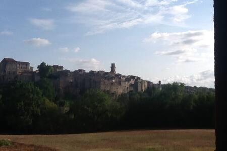 Amazing view of pitigliano - House