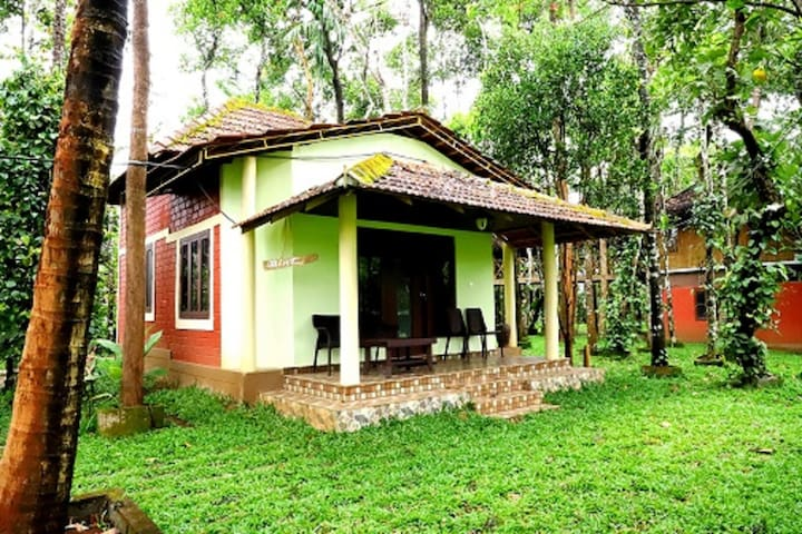 Premium rooms in Wayanad
